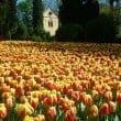 Parco Giardino Sigurtà: il video completo del parco