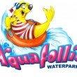 Aquafollie: Comunicato Stampa di fine Stagione