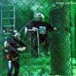 Acquario di Cattolica: l'immersione con gli squali