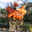 Disneyland Paris: il video di Halloween 2014