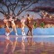 "Busch Gardens Africa: il nuovo show ""Iceploration"""