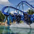 """Manta"" presso Sea World Florida"