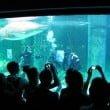 Acquario di Cattolica: il video della stagione 2010