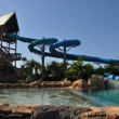 Aquatica by SeaWorld: video con le immagini del parco