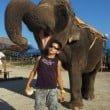 Safari Park d'Abruzzo: l'offerta del parco nel 2012