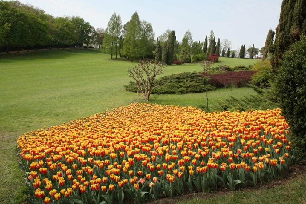 Parco giardino sigurt in scena il colore di - Immagini di giardini di villette ...
