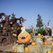 minitalia leolandia halloween 2128