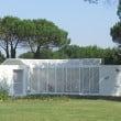 """Casa delle farfalle & Co: """"Il Miele degli Angeli"""" e inaugurazione del """"Bruco"""""""