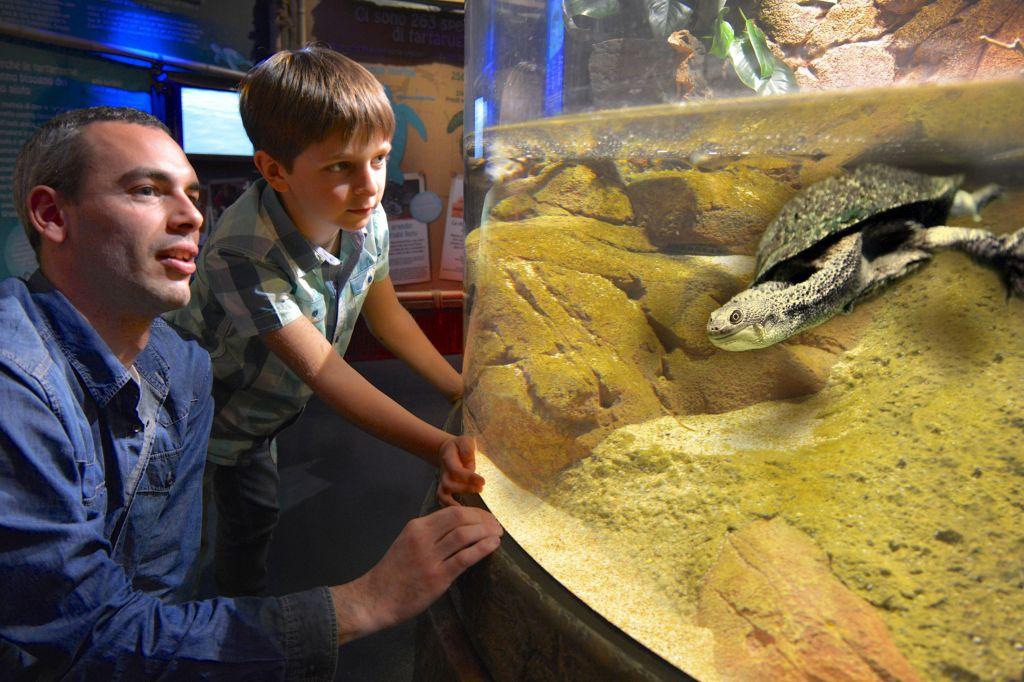 Gardaland presentata la nuova stagione parksmania for Prezzi acquario tartarughe