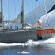 Acquario di Cala Gonone: iniziative speciali dal 5 al 9 luglio