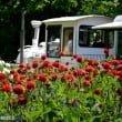 Parco Giardino Sigurtà: il nuovo video del parco