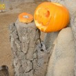 "Zoom Torino: ""Halloween"" al parco"