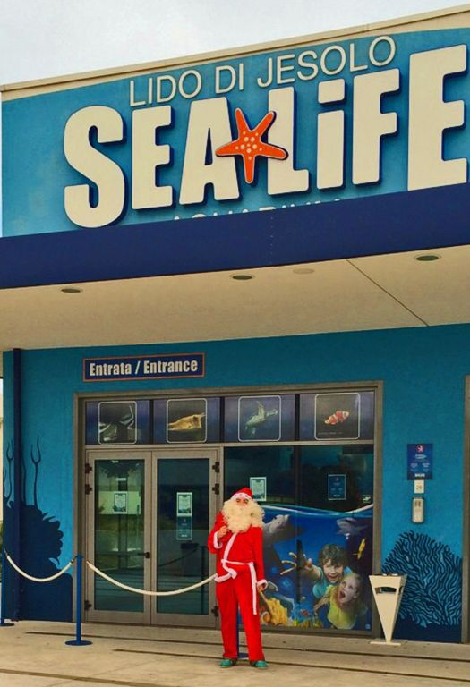 Sea Life Jesolo: eventi di Natale il 14 e 21 dicembre - Parksmania