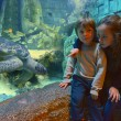 Lido di Jesolo SEA LIFE Aquarium_bimbi e tartaruga verde_