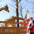 Zoom_Giraffe[1]