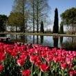 Parco Giardino Sigurtà: dall'8 marzo al via la nuova Stagione