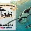 zoomarine - Giornata Mondiale dei Pinguini