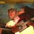 """Italia in miniatura: il video storico (1993) di """"Orsi Show"""""""