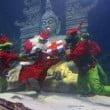 Sea Life Jesolo: allestimento ed eventi natalizi