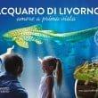 Acquario di Livorno 2016