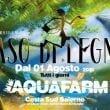 """Aquafarm: il Musical """"Naso di Legno"""""""
