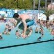 Aquafan: gli eventi di Ferragosto