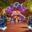 PortAventura: le offerte speciali natalizie