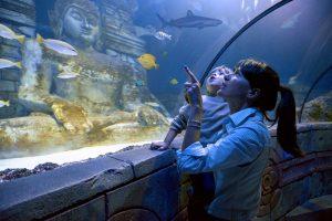 Lido di Jesolo SEA LIFE Aquarium_Festa della mamma 2017
