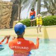 Experiencing a Year of Memorable Adventures at Yas Waterworld with Just One Pass