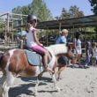 """Oltremare: """"Amico Pony"""" dal 15 settembre"""