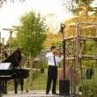 """Parco Natura Viva: il 31 maggio prima serata di """"Concerti nella Natura"""""""
