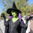 Parchi Costa della Riviera Romagnola: Halloween moltiplicato per 3