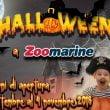 Zoomarine: giornata speciale di Halloween il 31 ottobre