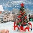 Parchi Costa: gli appuntamenti natalizi