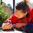 Zoomarine: la Giornata Mondiale dei Pinguini