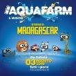 "Aquafarm: il musical ""Benvenuti in Madagascar"""